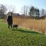 Führer mit Hund zur Suche