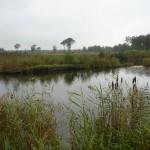 Gewässerübersicht