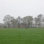 weite Quersuche im Feld mit Getreideansaat